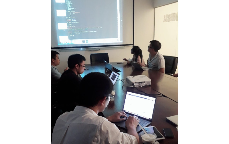 Developer's code review.